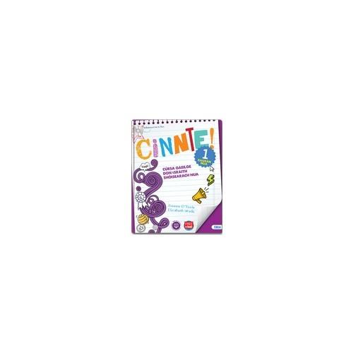Cinnte 1 – Workbook Only