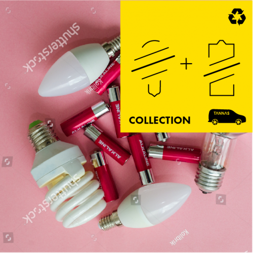 Battery and LightBulbs  Recycling Collection