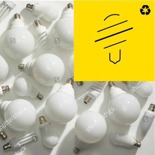 Lightbulbs Recycling Service