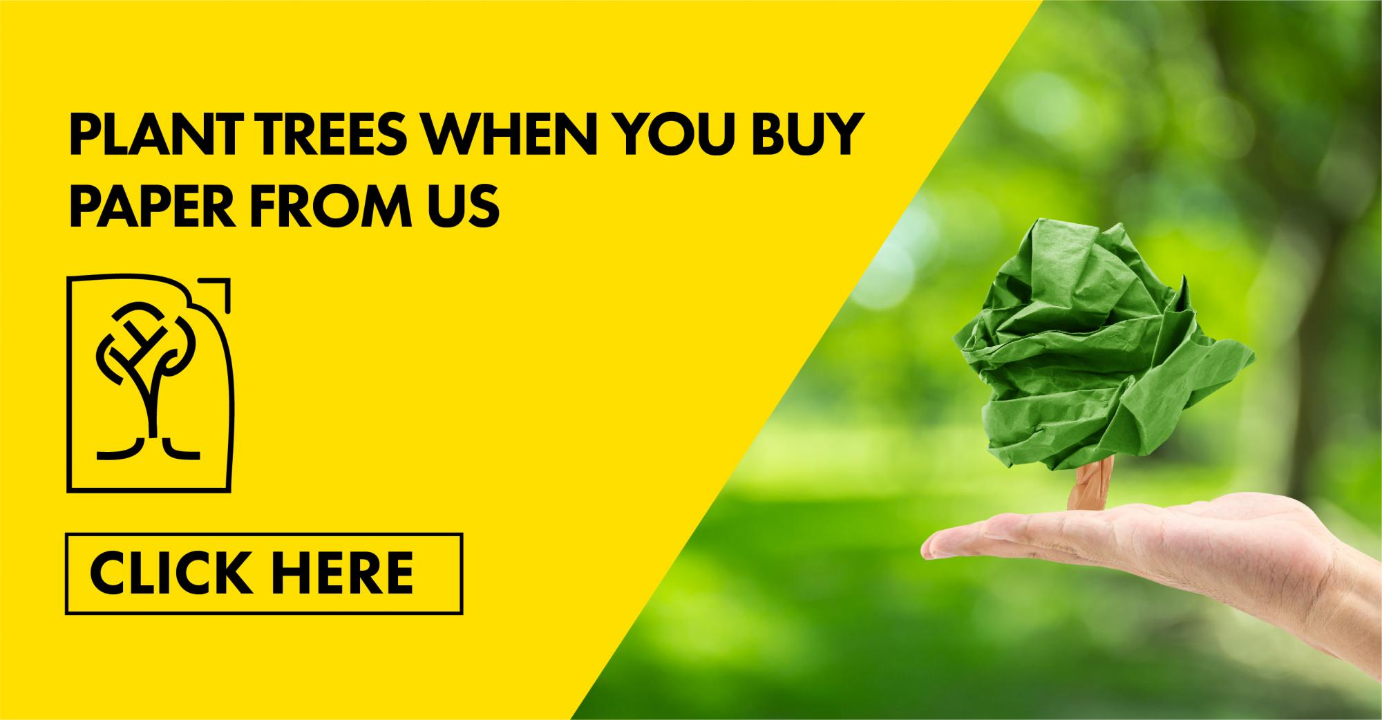 Plant Trees when you buy paper from us!