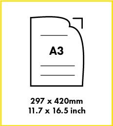 Paper A3 size