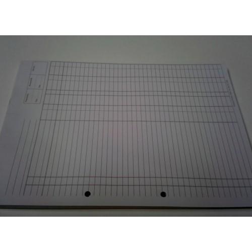 Audit Pad A4 1004
