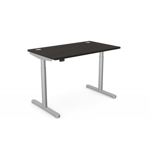 RoundE Electric Height Adjustable Sit-Stand Desk