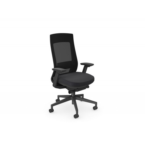 X.22 Ergonomic Mesh Backrest Chair with Lumbar Support in Black