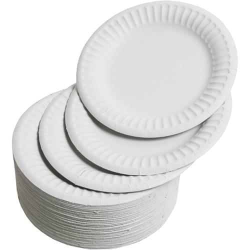 "Paper Plates 6"" Diameter (Pack of 100)"