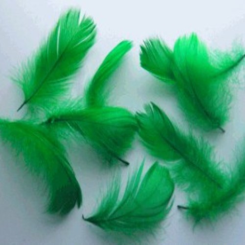 Feathers Green (Pack of 200)