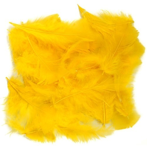 Feathers Yellow (Pack of 200)