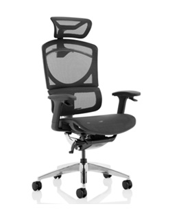Posture Office Seating
